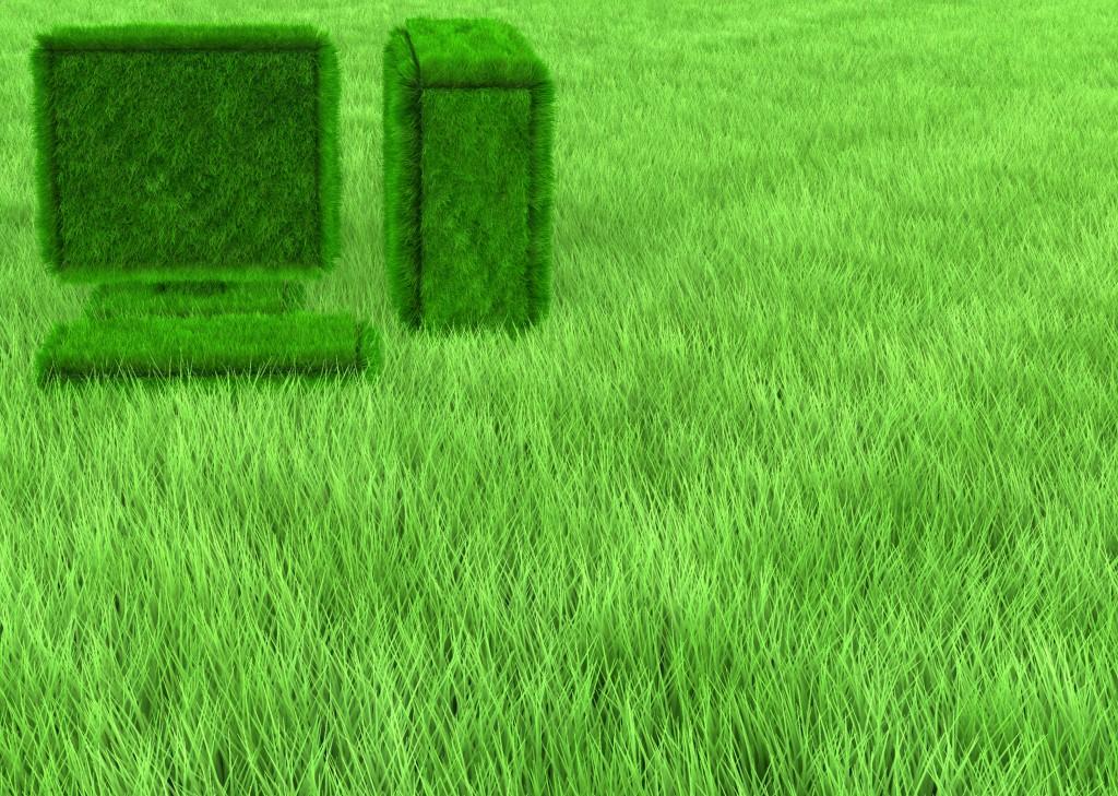 Grass Computer Wallpaper